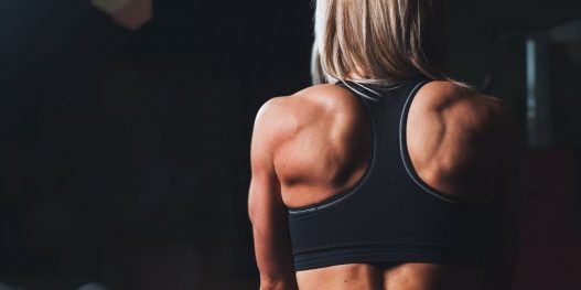 How to Workout Your Back Muscles from Home